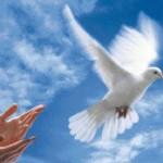 jeviensbientot - saint esprit