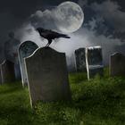 jeviensbientot - corbeau