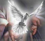 jeviensbientot - dons saint esprit