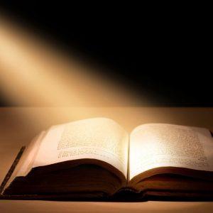 bible esprit et vie prix